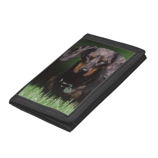 View of Dapple colored Dachshund Tri-fold Wallets