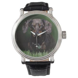View of Dapple colored Dachshund Wristwatch