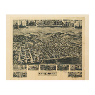 View of Frostburg Maryland by T.M. Fowler (1905) Wood Prints