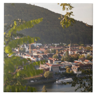 View of Heidelberg's Old Town Tile