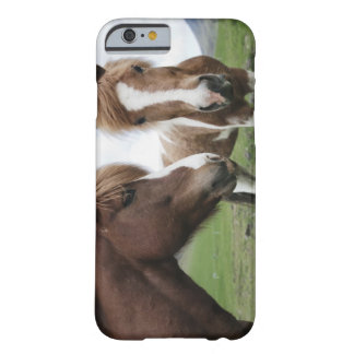 View of Horse, close-up Barely There iPhone 6 Case