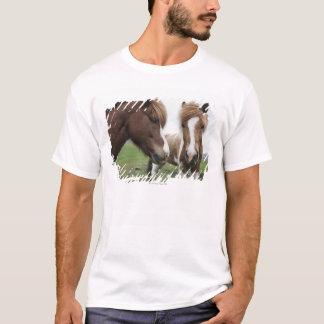View of Horse, close-up T-Shirt