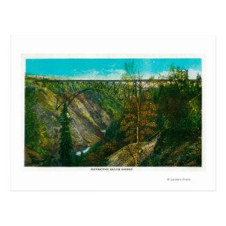View of Hurricane Gulch Bridge, Alaska Postcard