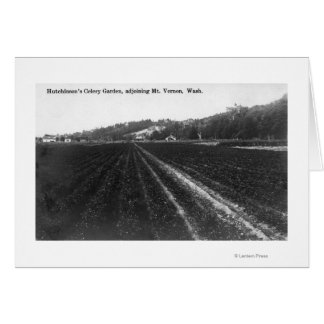 View of Hutchinson Celery Garden Greeting Card