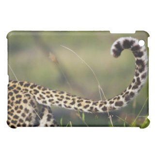 View of Leopards tail (Panthera pardus), Cover For The iPad Mini