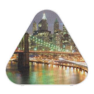 View of Lower Manhattan and the Brooklyn Bridge