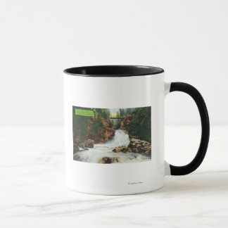 View of Lynn Canyon Falls Mug