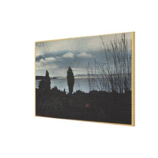 View of Mono Lake Gallery Wrap Canvas