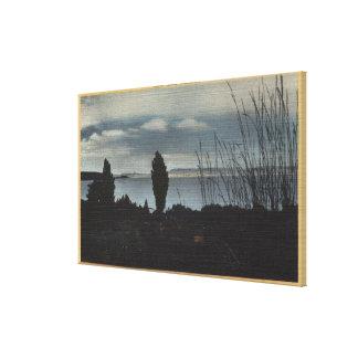 View of Mono Lake Canvas Print