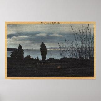 View of Mono Lake Print