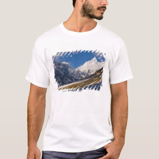 View of Mount Jichu Drake, Bhutan. T-Shirt