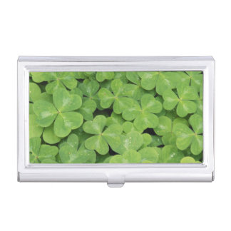 View of Oxalis Oregana wood Sorrel Foliage Business Card Holder