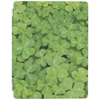 View of Oxalis Oregana wood Sorrel Foliage iPad Cover