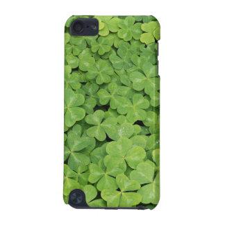 View of Oxalis Oregana wood Sorrel Foliage iPod Touch (5th Generation) Case