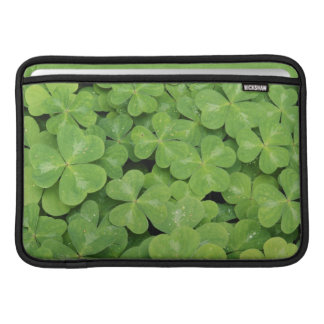 View of Oxalis Oregana wood Sorrel Foliage MacBook Sleeve