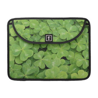 View of Oxalis Oregana wood Sorrel Foliage Sleeve For MacBooks