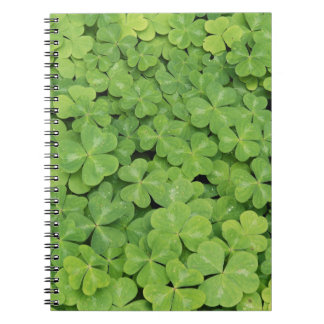 View of Oxalis Oregana wood Sorrel Foliage Spiral Notebook
