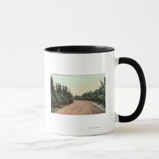 View of Palm Drive Mug