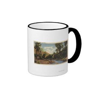 View of Palm Springs Canyon Mug