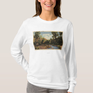 View of Palm Springs Canyon T-Shirt