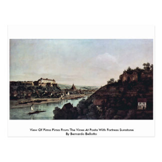 View Of Pirna Pirna From The Vines At Posta Postcard