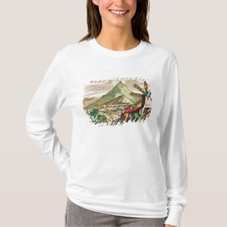 View of Potosi in Bolivia T-Shirt