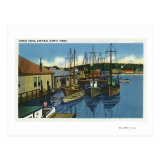 View of Sailboats Docked in the Harbor Postcard
