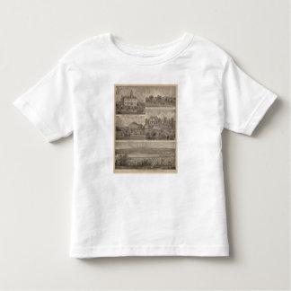 View of Sauk Rapids, Minnesota Toddler T-Shirt