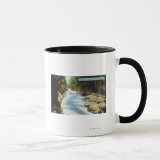 View of Seymour Canyon Mug