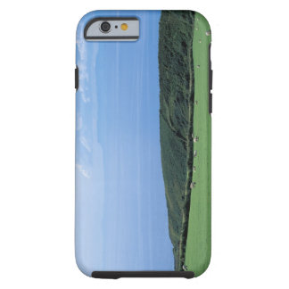view of sheep grazing on lush hillside tough iPhone 6 case
