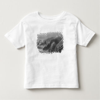 View of Slaines Castle, near Peterhead Toddler T-Shirt