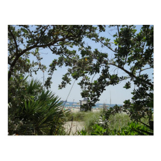 View of South Beach Post Cards