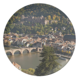 View of the Alte Brucke or Old Bridge Party Plates