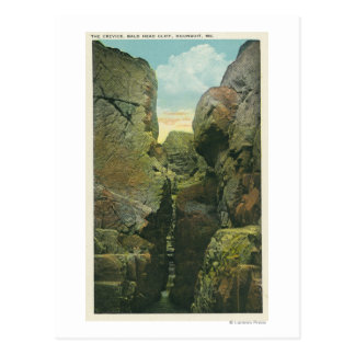 View of the Bald Head Cliff Crevice Postcard