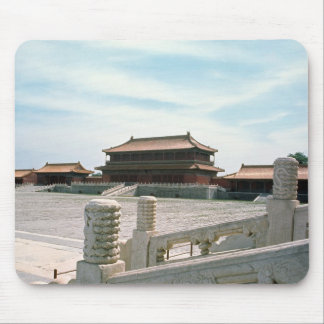 View of the central ramp mouse pad