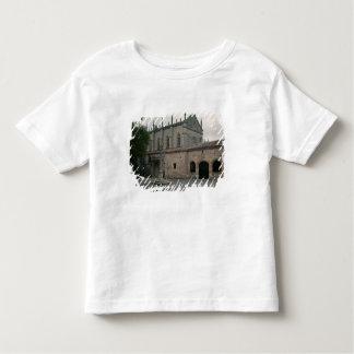 View of the Charterhouse Facade Toddler T-Shirt