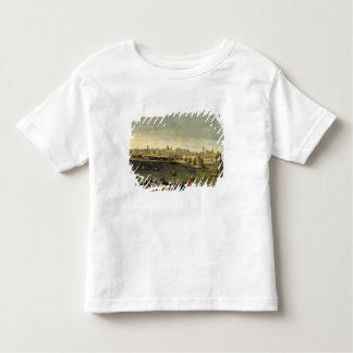 View of the City of Zaragoza Toddler T-Shirt
