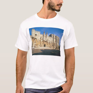 View of the entrance facade of the Palace (photo) T-Shirt