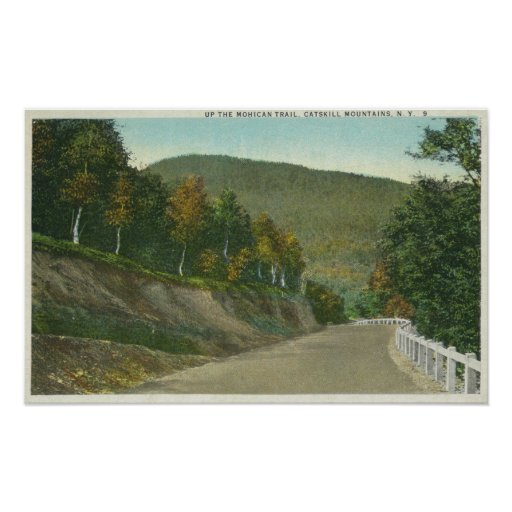 View of the Mohican Trail Poster