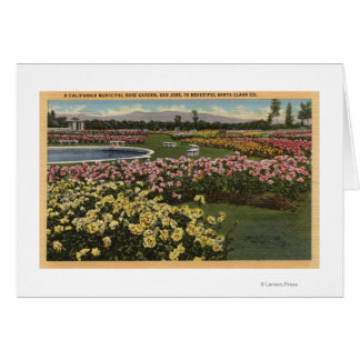 View of the Municipal Rose Garden Greeting Cards