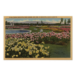 View of the Municipal Rose Garden Poster
