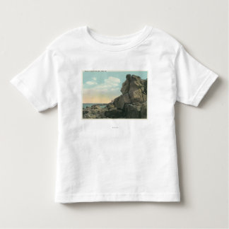 View of the Old Man of the Sea Rock Formation Toddler T-Shirt