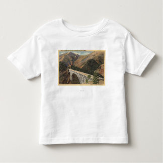 View of the Pacific Hwy Bridge over Shasta Tee Shirts