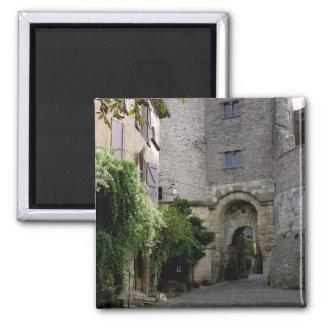 View of the Porte des Ormeaux (photo) Square Magnet