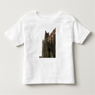 View of the right side with the canopied porch (ph toddler T-Shirt