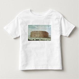 View of the Roman Amphitheatre Shirts