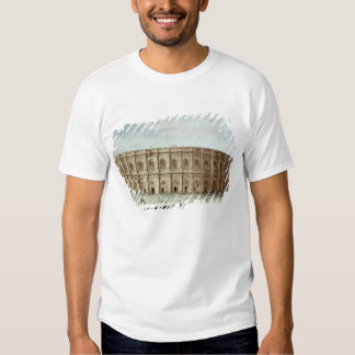 View of the Roman Amphitheatre T Shirts