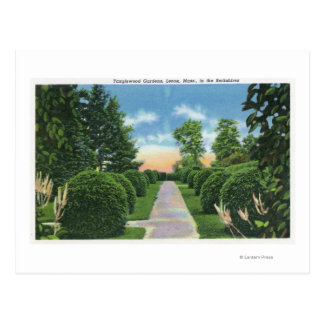 View of the Tanglewood Gardens # 2 Postcards