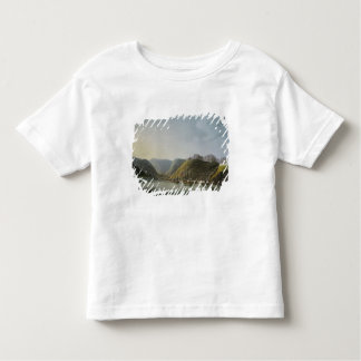 View of the West Side of Porto Ferraio Bay, Toddler T-Shirt