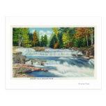 View of the Wild Cat River and Jackson Falls Postcard